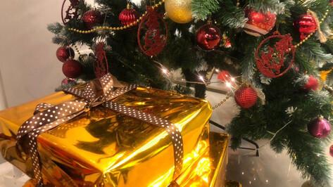 Твори добро. Кто в Воронежской области особенно нуждается в чуде под Новый год