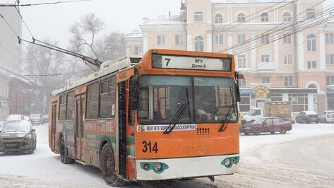 Еще один воронежский троллейбусный маршрут приостановил работу