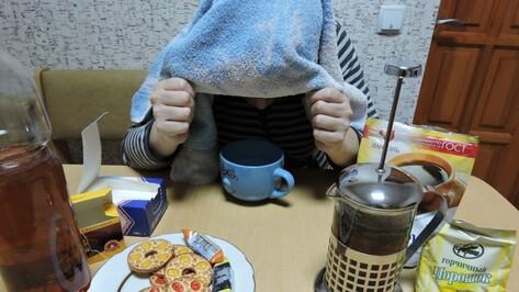 Воронеж занял 4 место в России по количеству «простудных» запросов в Сети