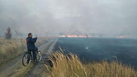 Список пожароопасных мест создаст правительство Воронежской области