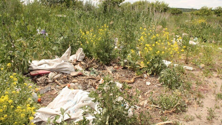 Воронежец отказался убрать незаконную свалку на своем участке в хохольском селе