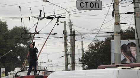 Троллейбусы на автономном ходу пообещал Воронежу мэр