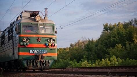 РЖД запустит пассажирские поезда в обход Украины в Воронежской области 15 ноября