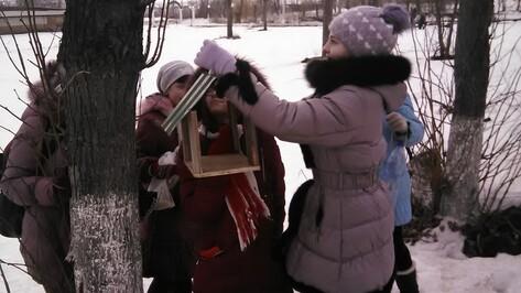 В Хохольском районе стартовала акция «Покорми птиц зимой»