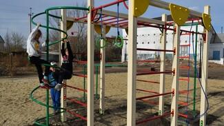 Детский спорткомплекс за 500 тыс рублей установят тосовцы грибановского села Красовка