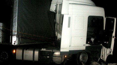 В ДТП с фурой в Воронежской области 2 человека погибли и 6 ранены