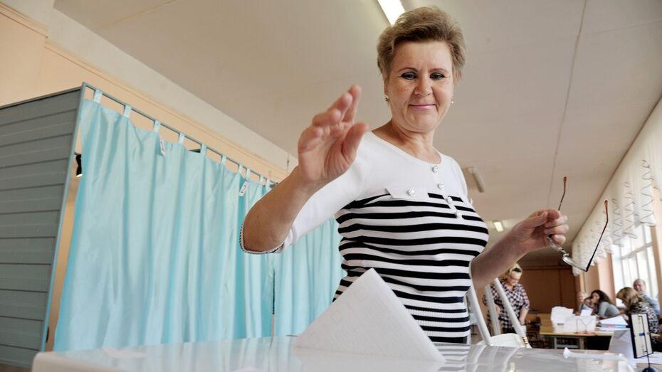Воронежская гордума назначила выборы на 13 сентября