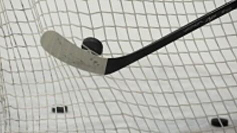Воронеж присоединится к Ночной хоккейной лиге