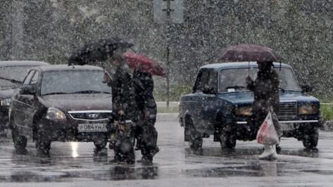 Спасатели предупредили о тумане и гололеде в Воронежской области
