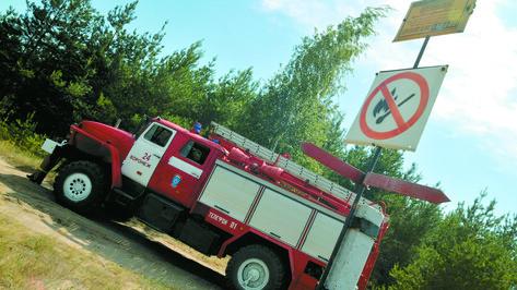 В Россошанском районе спасатели тушили природный пожар