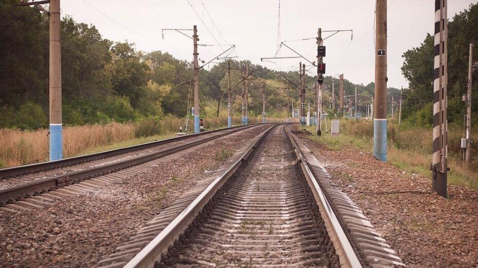 РЖД запустили грузовые поезда в обход Украины в Воронежской области