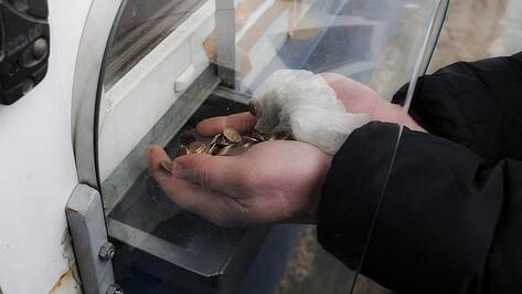 Воронежцы отдали за проезд по трассе «Дон» 70 кг десятикопеечных монет