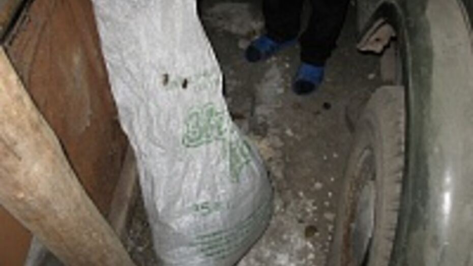 Житель Воронежской области хранил марихуану в пакете от наполнителя кошачьего туалета