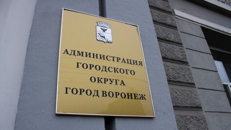 Чиновники мэрии Воронежа выявили 43 случая коррупции в 2017 году