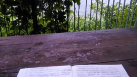 Воронежская писательница призвала Росархив перейти на удаленку