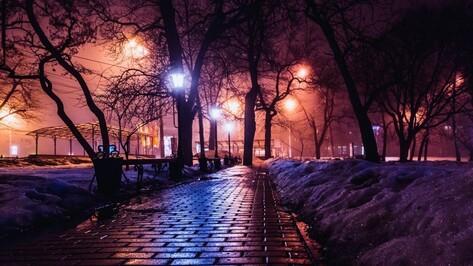 Гид РИА «Воронеж»: куда сходить на выходных 30 и 31 января