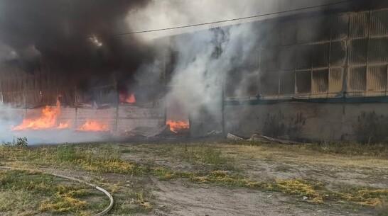 Крупный пожар произошел на маслозаводе в Воронежской области