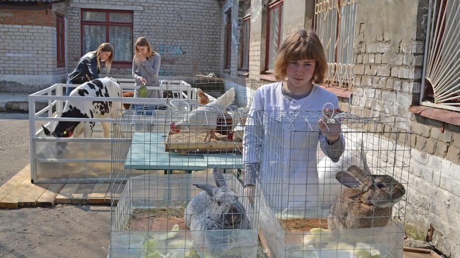 В Лисках студенты впервые сдадут демо-экзамен по стандартам World Skills