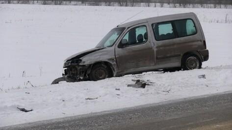 Воронежские спасатели вновь предупредили о сильном снеге и гололеде