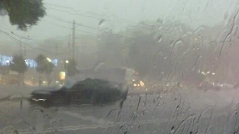 Спасатели предупредили о сильном ветре и ливне в Воронежской области