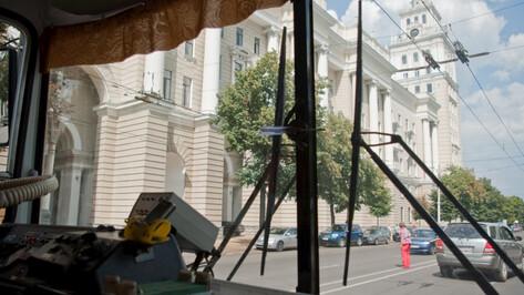 Из-за упавших в центре Воронежа столбов отменили движение троллейбусов