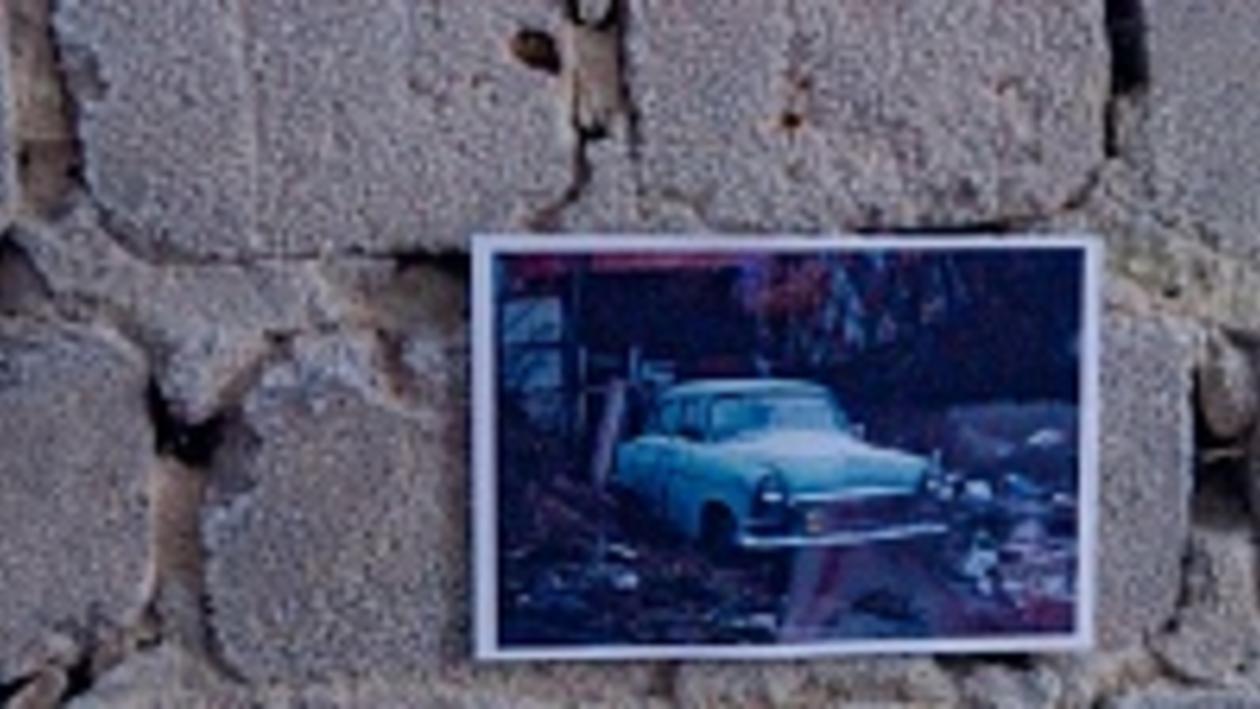 Выставка на руинах в парке «Динамо»: инструкция по применению