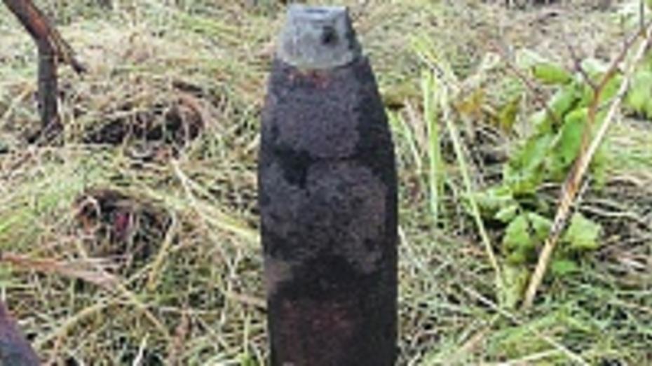 В Панинском районе нашли артиллерийский снаряд времен войны