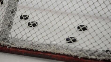 Хоккейная «Россошь» проиграла «СКА-Карелии» второй матч