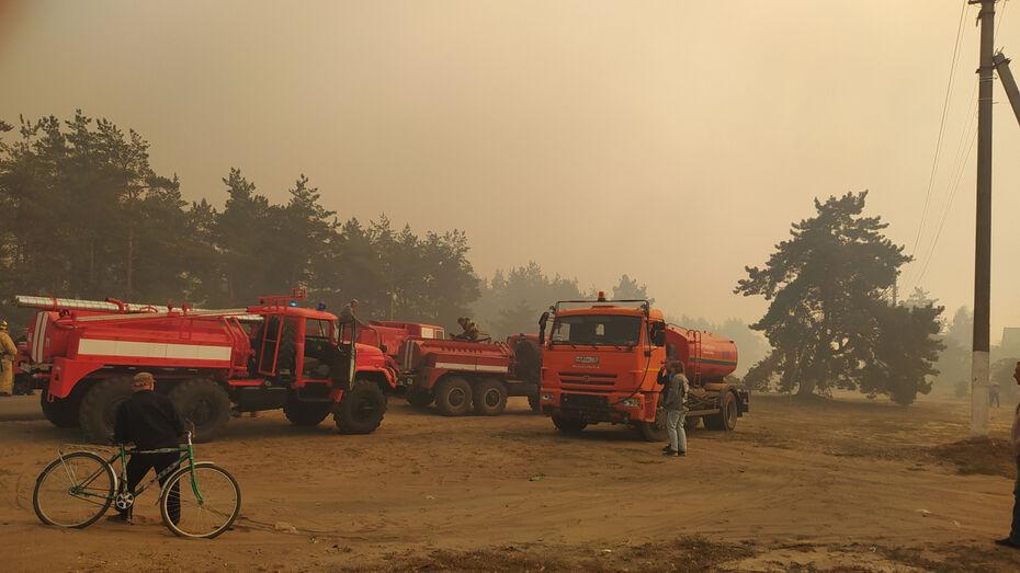 Масштабный лесной пожар приблизился к жилым домам в Воронежской области