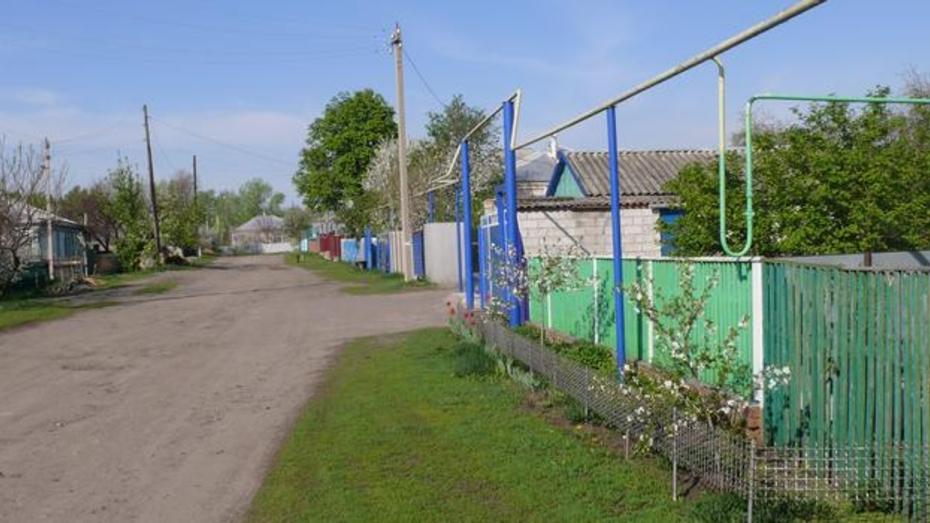 Лучшие воронежские поселения получат гранты от 0,5 до 1,25 млн рублей