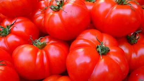 Сигареты под видом томатной пасты ввезли в Воронежскую область