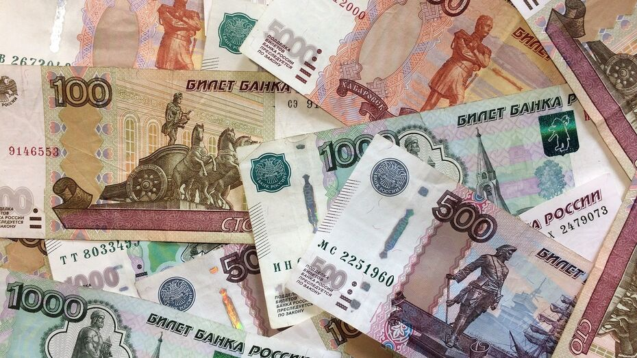 Средний ежемесячный доход жителя Воронежской области за год вырос на 7,6%