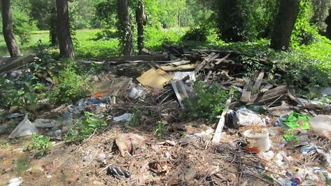 В 3 лесничествах Воронежской области нашли незаконные свалки