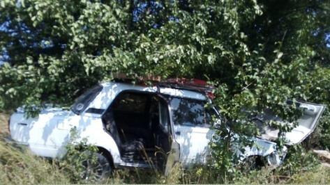 В Воронежской области «семерка» врезалась в дерево: пострадал 8-летний мальчик