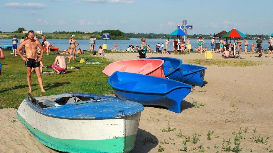 На российские пляжи запретили приводить животных и купаться по ночам