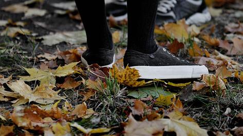 Синоптики спрогнозировали аномальное тепло в Воронеже