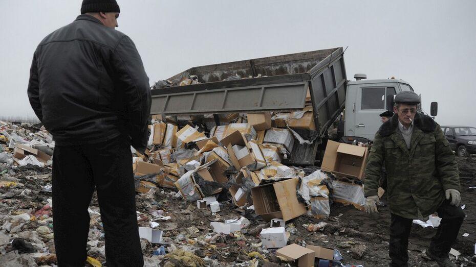 В Воронеже начали разработку территориальной схемы по обращению с отходами