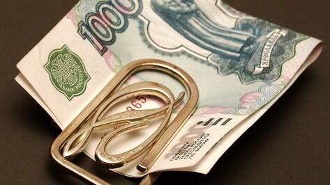 Директор воронежской агрофирмы попался на неуплате налогов на 14 млн рублей