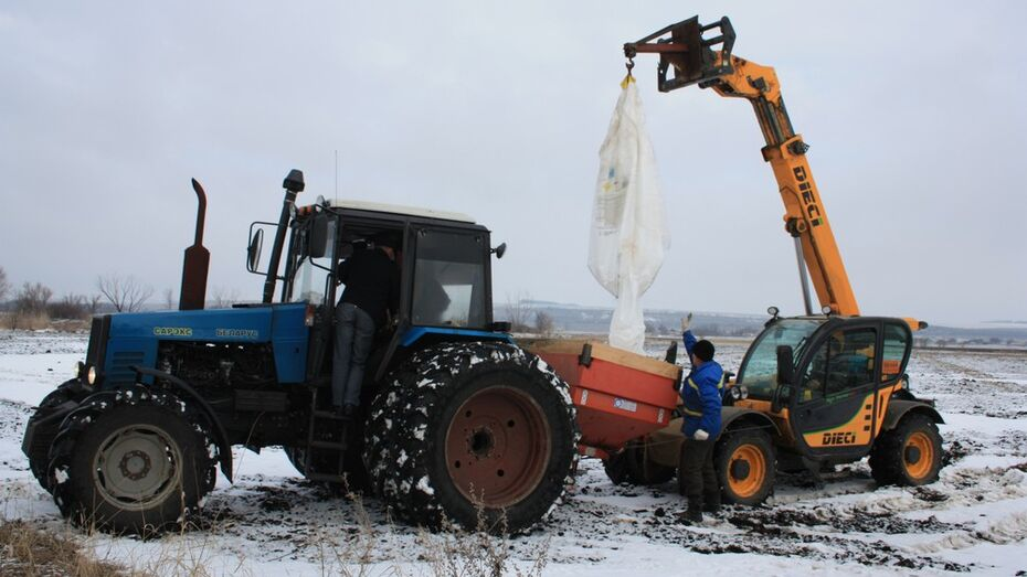 В Богучарском районе в марте начались весенние полевые работы