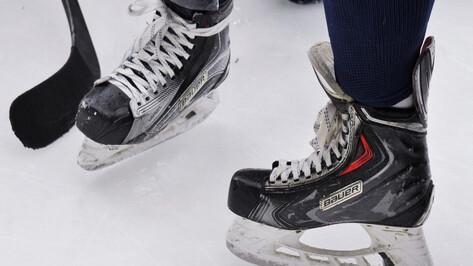 Хоккейная «Россошь» разгромила «Кристалл»