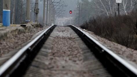 В Воронежской области на железной дороге в 2017 году погибли 13 человек