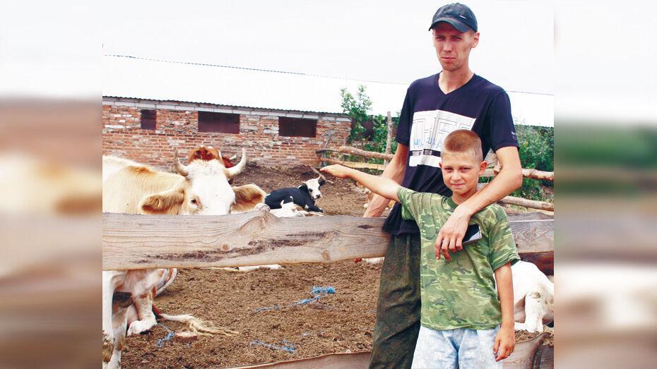 Житель Богучарского района занялся разведением КРС молочного направления
