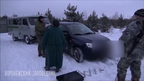 Инспекторы Воронежского заповедника преградили путь рубившим сосны браконьерам