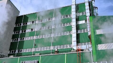 Евдаковский МЖК в Воронежской области заработает без собственника