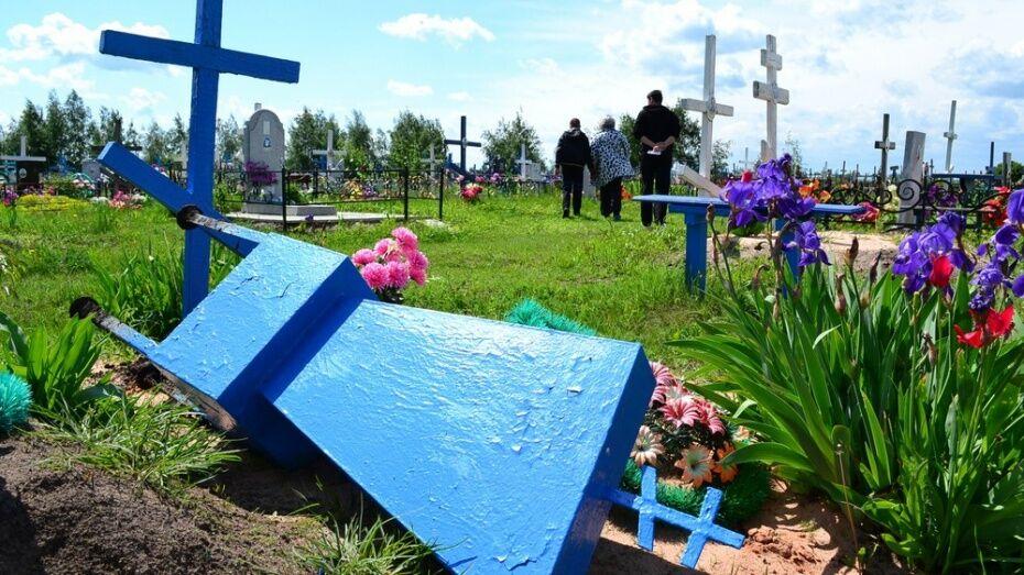 В Терновке на кладбище вандалы повредили 5 памятников