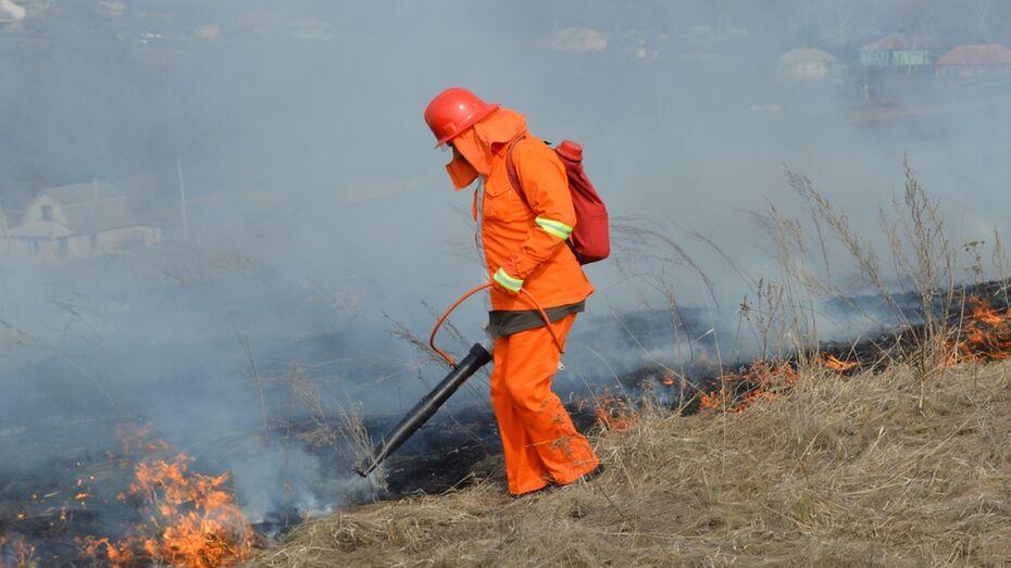 В Рамонском районе за выходные произошло 38 пожаров