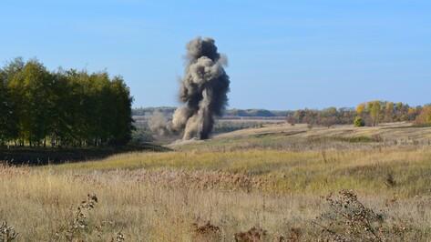 В Острогожском районе взрывотехники уничтожили 45 снарядов времен войны