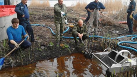Масляное пятно на Воронежском водохранилище появилось от незаконной врезки в ливневый коллектор