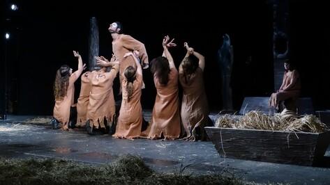Тбилисский театр привез в Воронеж толстовского «Холстомера»