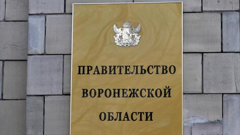 Департамент культуры Воронежской области временно возглавила Мария Мазур